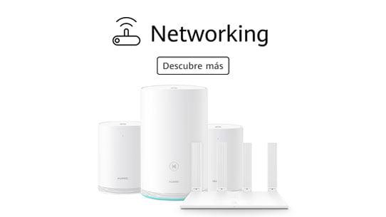 Networking Huawei